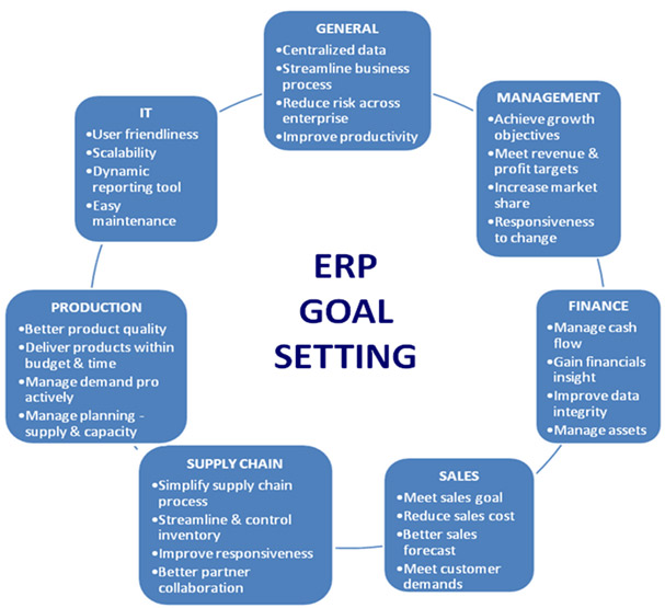 ERP Goals Road Map TCO Budget Business Case
